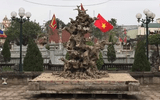 Cận cảnh phôi cây sanh như khúc củi khô nhưng có giá tiền tỷ của đại gia đồng nát Hà Nội