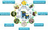 Sức khoẻ - Làm đẹp - BoniVein – Bí quyết 2 trong 1 trị cả bệnh trĩ và suy giãn tĩnh mạch