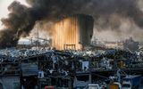 Tin thế giới - Nhà ngoại giao Đức thiệt mạng trong vụ nổ thảm khốc ở Lebanon