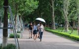 Tin tức dự báo thời tiết mới nhất hôm nay 8/8: Hà Nội sáng sớm có mưa, trưa chiều hửng nắng