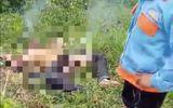 Tin trong nước - Phát hiện người đàn ông bốc cháy ngùn ngụt ở bãi đất trống sau tiếng la hét