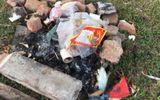 Truyền thông - Thương hiệu - Phường Long Biên - Quận Long Biên - Hà Nội: Thường xuyên ra quân dọn sạch rác thải khu vực bãi bồi ven sông