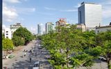 """Tin trong nước - """"Xanh mắt"""" với những con đường phủ đầy cây tại Hà Nội"""