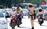 Trường hợp nào người vi phạm giao thông được miễn, giảm tiền nộp phạt?
