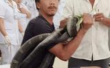 """Vụ tay không bắt hổ mang chúa 2,5 mét, người đàn ông """"thập tử nhất sinh"""": Người nhà nạn nhân tiết lộ sốc"""