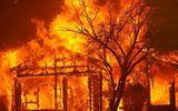 Rừng cháy đỏ lửa sau những trận sét đánh, hàng chục nghìn người Mỹ phải sơ tán