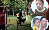 Đưa bé trai 2 tuổi ở Bắc Ninh lên tận Tuyên Quang, nữ nghi phạm đối diện hình phạt nào?
