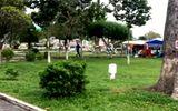 Truy tìm các đối tượng sát hại người đàn ông trong công viên Tam Hiệp
