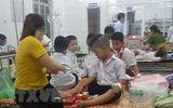 26 học sinh tiểu học ở Quảng Trị nhập viện vì bị ong đốt