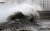 Chùm ảnh: Hàn Quốc bị tàn phá nặng nề vì siêu bão Haishen