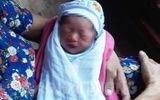 Hải Dương: Một bé gái sơ sinh bị bỏ rơi trong vỏ thùng sữa ở cổng đền