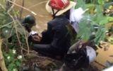 Tin trong nước - Đi làm đồng, hốt hoảng phát hiện 2 thanh niên 18 tuổi tử vong bên bờ suối