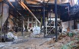 Tin trong nước - Kiên Giang: Nhà máy xay lúa cháy lớn, thiệt hại 10 tỷ đồng