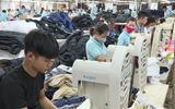 Đời sống - Thái Bình: Chú trọng, đẩy mạnh công tác giải quyết việc làm cho người lao động từ nguồn Quỹ quốc gia về việc làm
