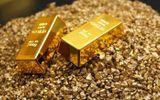 Giá vàng hôm nay 28/9/2020: Giá vàng SJC ở mức 55 triệu đồng/lượng
