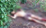 An ninh - Hình sự - Điều tra vụ phát hiện thi thể người đàn ông trong vườn tiêu, bên cạnh là 1 con dao