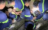 Giải cứu bé trai 17 tháng tuổi bị mắc kẹt dưới cống thoát nước