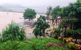 Đà Nẵng khẩn trương cho học sinh nghỉ học từ trưa 8/10 để tránh mưa lũ