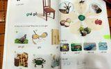 Sách giáo khoa Tiếng Việt lớp 1 mới: Đang trang 32 lại đến... trang 17