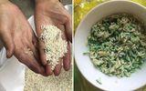 4 loại gạo cực độc tuyệt đối đừng nên ăn, không những gây ung thư mà sinh con bị dị tật