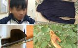 Vụ vợ bị sát hại, bỏ lại 3 con thơ cho chồng mù lòa: Nam sinh 16 tuổi từng đột nhập nhà nạn nhân