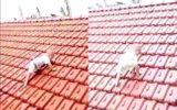 Cộng đồng mạng - Tin tức đời sống mới nhất ngày 20/10/2020: Xúc động hình ảnh em bé trèo lên mái nhà tránh lũ