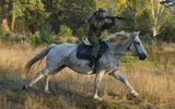 """Tin thế giới - Chiêm ngưỡng nhan sắc """"hút hồn"""" nhưng đầy mạnh mẽ của các """"bóng hồng"""" quân đội Nga trên lưng ngựa"""