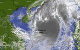 Tin trong nước - Bão số 8 mạnh lên cấp 13, cách quần đảo Hoàng Sa 300km