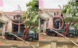 """Cộng đồng mạng - Video: Hai chú trâu trên mái nhà được tiếp đất sau khi lũ rút, dân mạng tò mò cách """"giải cứu"""""""