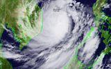 Tin trong nước - Tin bão số 9 khẩn cấp: Giật cấp 17, đổ bộ Đà Nẵng - Phú Yên mạnh nhất cấp 12-13
