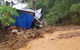 Tin trong nước - Công điện Thủ tướng: Khẩn trương cứu hộ nạn nhân bị sạt lở đất tại huyện Nam Trà My, Quảng Nam