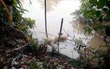 Phát hiện thi thể lõa thể, trên bắp tay có hình xăm trên sông Bảo Định