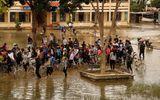Khánh Hòa, Phú Yên cho học sinh nghỉ để ứng phó với bão số 12