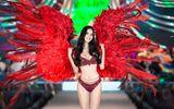 Lần đầu tiên Top 3 Hoa hậu Việt Nam đương nhiệm trình diễn bikini trước khi hết nhiệm kỳ
