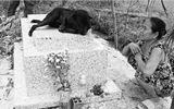 Gia đình - Tình yêu - Chuyện ly kỳ về chú chó 3 năm nằm canh mộ em bé 2 tuổi khiến chủ nhân rơi nước mắt