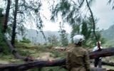 Tin trong nước - Vụ thi thể người đàn ông ở rừng dương: Tay nạn nhân cầm cưa