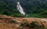Tin trong nước - Quảng Bình: Bất ngờ phát hiện 2 thị thể nằm trên võng trong rừng