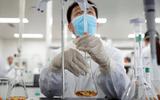 Indonesia cấp vaccine phòng COVID-19 miễn phí cho người dân
