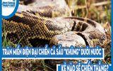 """Video: Trăn Miến Điện đại chiến cá sấu """"khủng"""" dưới nước, kẻ nào sẽ chiến thắng?"""