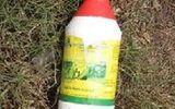 Vụ 4 cha con uống thuốc diệt cỏ ở Bình Phước: Hé lộ nguyên nhân