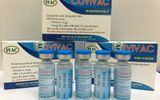 Việt Nam thử nghiệm loại vaccine COVID-19 thứ hai, 125 người tiêm giai đoạn đầu