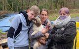 Biến mất suốt 8 năm, chú chó bất ngờ trở về đúng đêm giao thừa làm gia đình chủ vỡ òa hạnh phúc