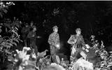 Đời sống - Chuyện về những người lính quen với Tết xa nhà ở ngã ba biên giới