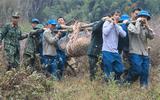"""Sơn La: Hủy nổ quả bom """"khủng"""" nặng 600kg sót lại sau chiến tranh"""