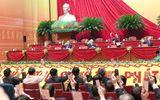 1.587 đại biểu được triệu tập dự Đại hội XIII đều đủ tư cách
