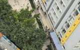 Tin trong nước - Vụ Chi cục Trưởng THADS quận Bình Tân rơi lầu  tử vong: Công an điều tra
