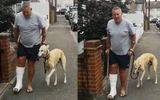 """Đời sống - Chi hơn 9 triệu đưa chó cưng đi khám, người đàn ông bất ngờ biết được sự thực """"cười ra nước mắt"""""""
