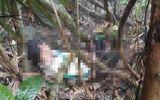 Lạng Sơn: Tìm thấy thi thể người đàn ông trên đồi không tên sau 10 ngày mất tích
