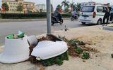 """Tin tai nạn giao thông ngày 4/2: Lao như """"bay"""" vào chậu hoa Tết, người đàn ông tử vong"""