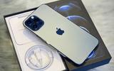 Sắm iPhone đón Tết ở đâu đỡ chen chúc và giá hợp lý trong mùa Covid?